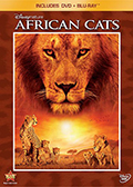 Afircan Cats DVD