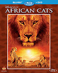 Afircan Cats Bluray