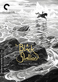 The Black Stallion Criterion Collection DVD