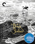 The Black Stallion Criterion Collection Bluray