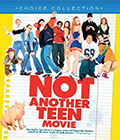 Not Another Teen Movie Bluray